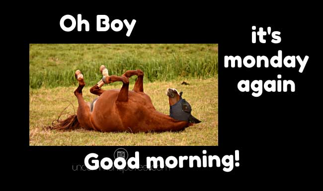 funny good morning text messages