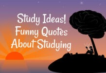Funny Quotes On Study